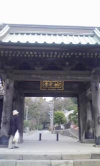鎌倉_100323_12