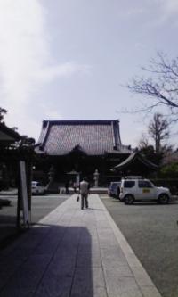 鎌倉_100323_21
