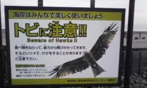 鎌倉_100323_31