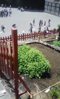 鎌倉100601_2