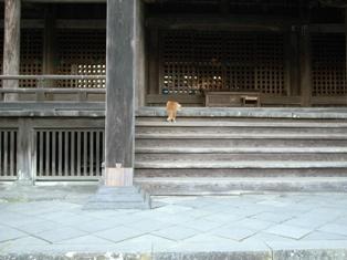 鎌倉_110119_2