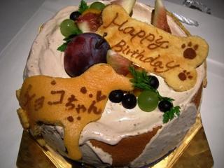 ワンちゃん用ケーキ