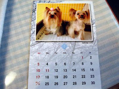 カレンダーもらったよ