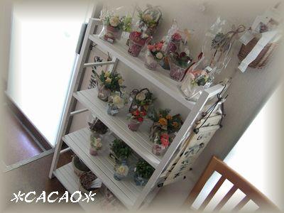 花2010-3