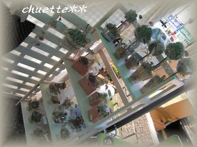 2010ABC9.jpg