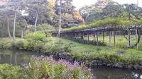 小石川公園091018_162558