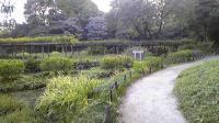 小石川公園091018_162711