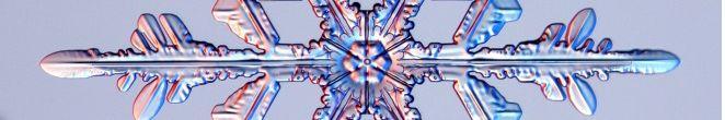 雪の結晶_09102206