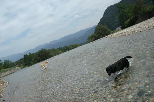 9月も川遊び7