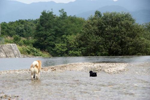9月も川遊び8