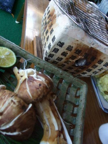 豊作松茸4