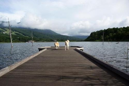 女神湖11