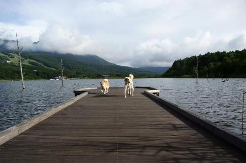 女神湖12