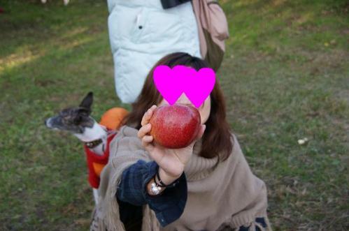 林檎狩り47