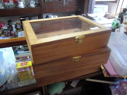 フリマ1004 標本箱