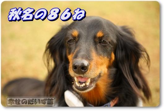 DPP_1834-021.jpg