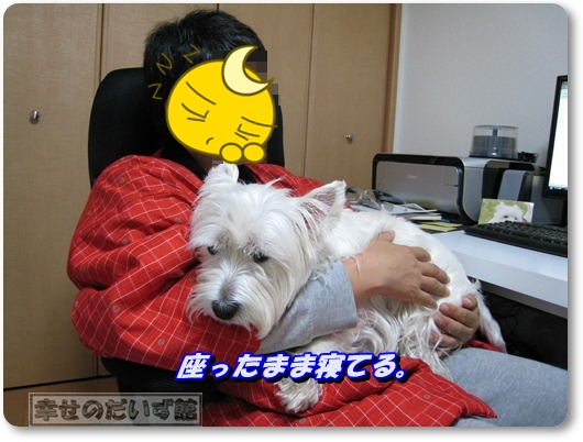 IMG_8261-003.jpg