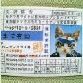ナメ猫 免許証
