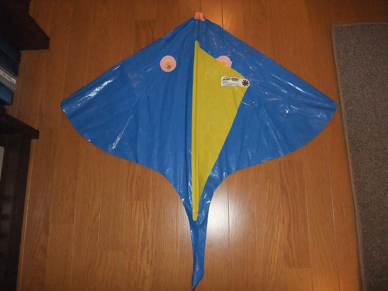 1978ゲイラ・ブルー 2