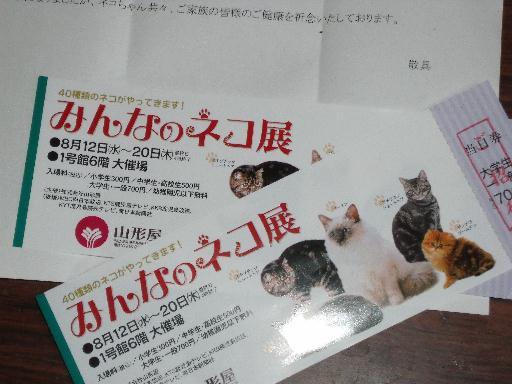 090819猫展03