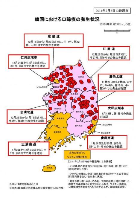 【韓国】 口蹄疫感染による殺処分、300万頭を突破 2月3日現在