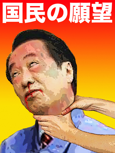 菅直人、国民の願望