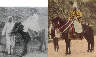 朝鮮馬(左)と日本の在来種(右)