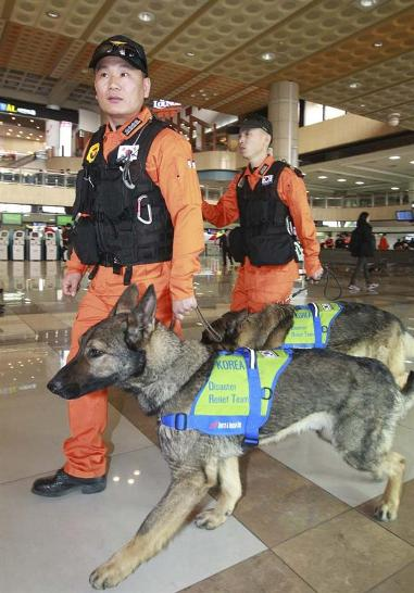 Korean rescue team