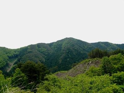 貞任山(さだりやま)