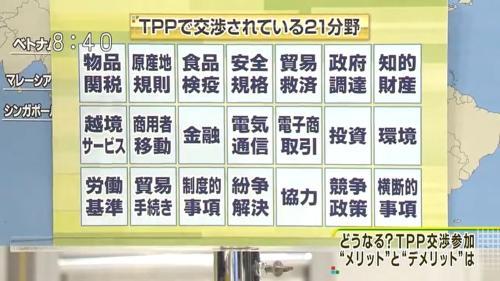 TPP24項目