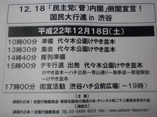 12.18「民主党(菅)内閣」倒閣宣言! 国民大行進 in 渋谷