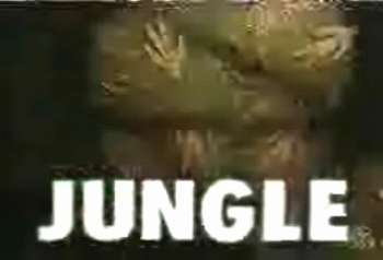 JUNGLE(ジャングル)とは、フジテレビの深夜枠『JOCX-TV2』で1992年~1993年頃に放送された同枠の番組冒頭のアイキャッチかりし命 あふれ」)。