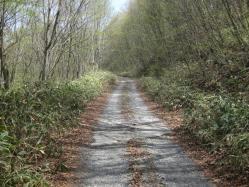 御荷鉾林道4