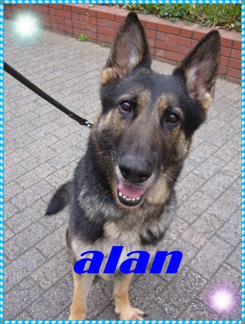 alan_convert_20091226200432.jpg