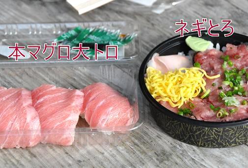 03jan11michinoeki02