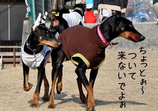 09jan11riru&yukichi01