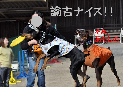 09jan11yukichi02