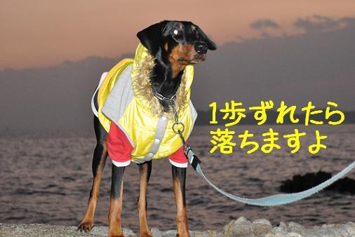23dec10takeshima01