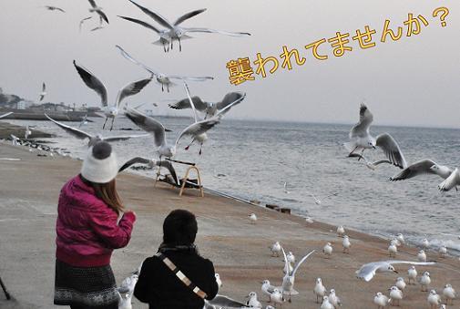 23dec10takeshima04