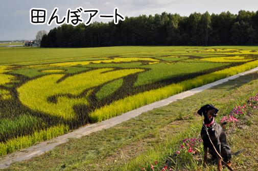 asahikawa201104