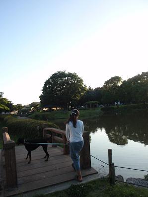 daimonpark