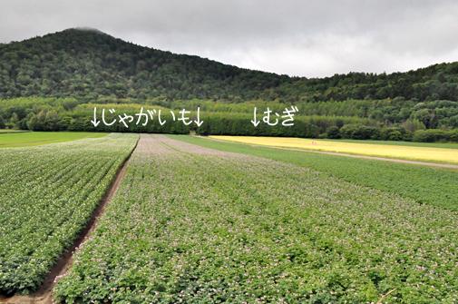 furano201104