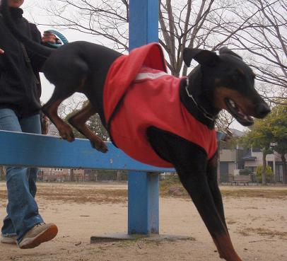 jump04