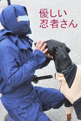 kakegawa01