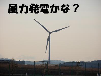 mikawarinkairyokuti01