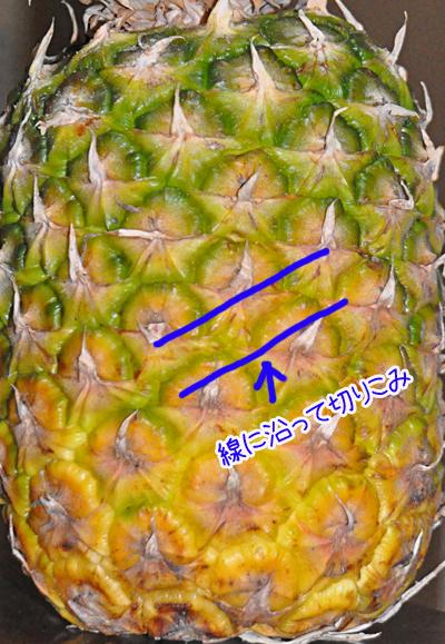 pinepple02