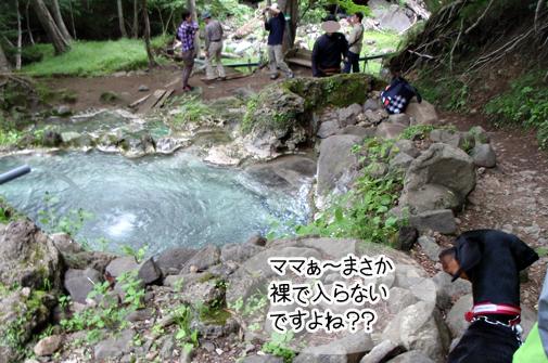 shiretoko201112