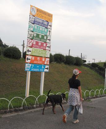 signboardsogo