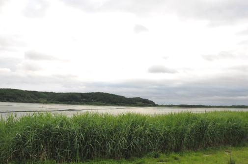 kushiro201105
