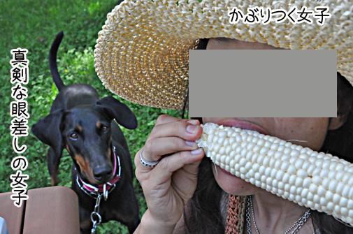 tomakomai201102